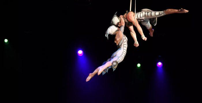 """Espetáculo """"Ovo"""" da companhia canadense Cirque du Soleil — Foto: Cirque du Soleil/Divulgação"""